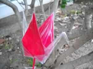 Red crane...