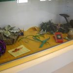 Exhibit Highlight | Bay Shore-Brightwaters Library Exhibition
