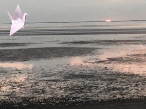 Sunset with Crane