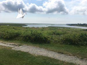 Cape Cod Open Air