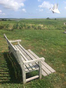 Cape Cod Bench
