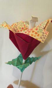 Flower Lisa folded at Zaragoza club meeting